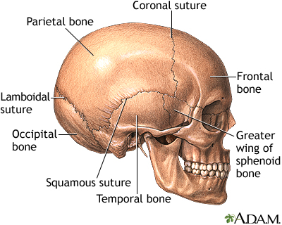 pics-afracian-brain-tumor-adults
